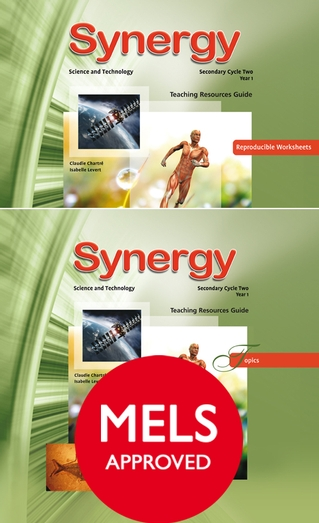 Synergy - Cycle Two (Year One)